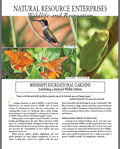 Mississippi Recreational Gardens: Establishing a Backyard Wildlife Habitat
