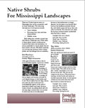 Native Shrubs for Mississippi Landscape